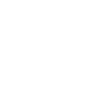 Magento 2x